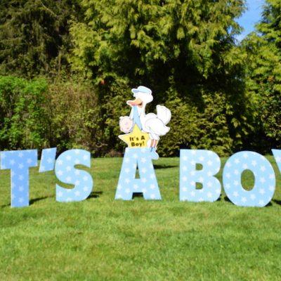 Boy Stork Birth Announcement Yard Sign Yard Announcements – Birth Announcement Signs