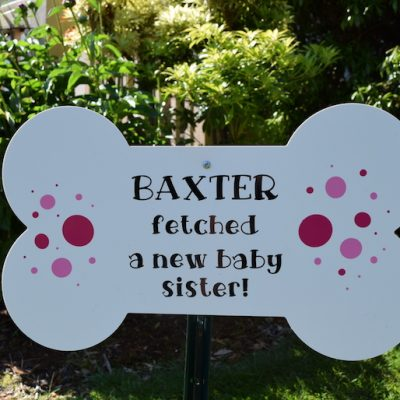 Shopping Cart 42 Dog Bone Message Star New Baby Birth Announcement Stork Sign Proud Dog