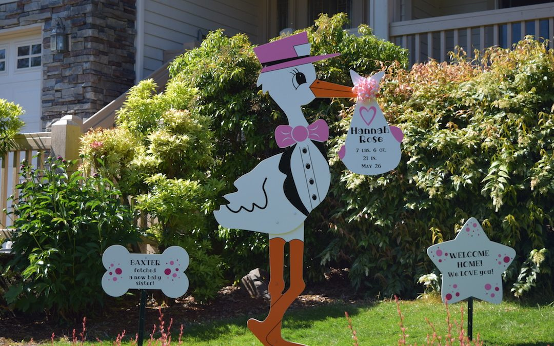 Stork Birth Announcment Sign It's a Girl Proud Big Sister
