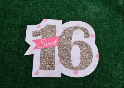 G-41 Small Sweet Sixteen Pink