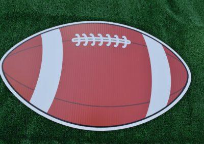 G-231 Football