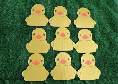 G-317 Baby Chicks