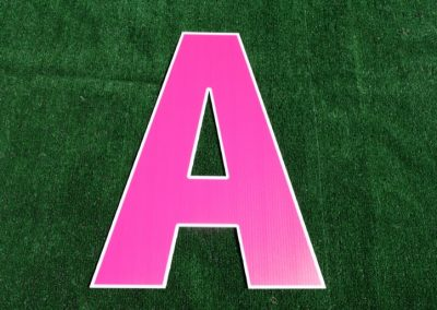 L-4 Pink Letters and Numbers