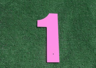T-18 Pink 1