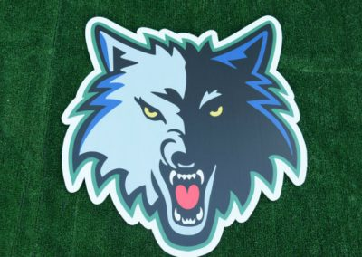 G-410 Timberwolves Yard Sign