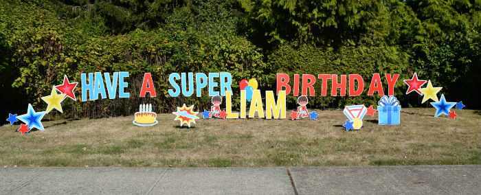 Our Birthday Yard Signs make the Perfect Themed Party Decorations!