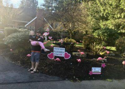 Happy Customers Flamingo Flocking