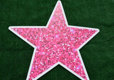 Pink Glitter Star Yard Sign