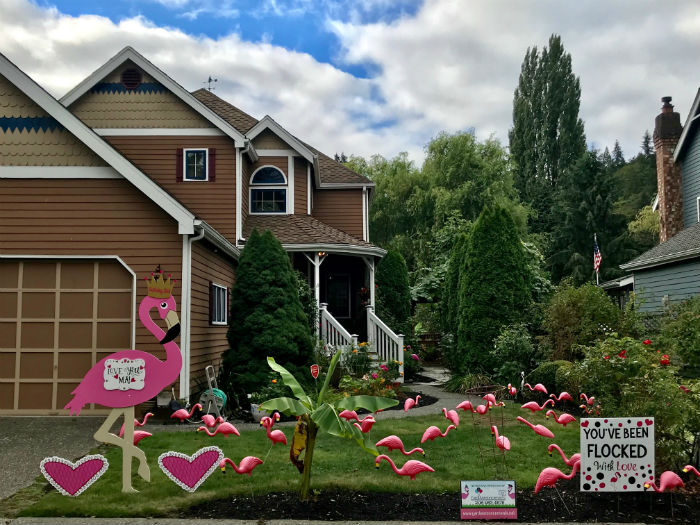 Milestone Birthday?  Yard Announcements will make them Smile with our FUN Flamingo Flocking and Birthday Yard Signs!  They'll Never Forget THAT Birthday!