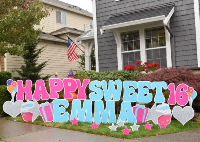 Sweet 16 pink blue birthday yard signs