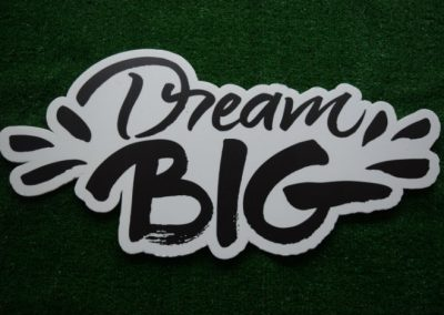 Dream Big Yard Sign Word Saying